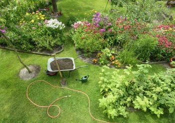 Cuidar bem da grama é a base para um jardim atraente