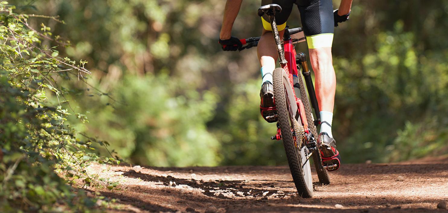 Andar de bicicleta é alternativa sadia e agradável para o verão