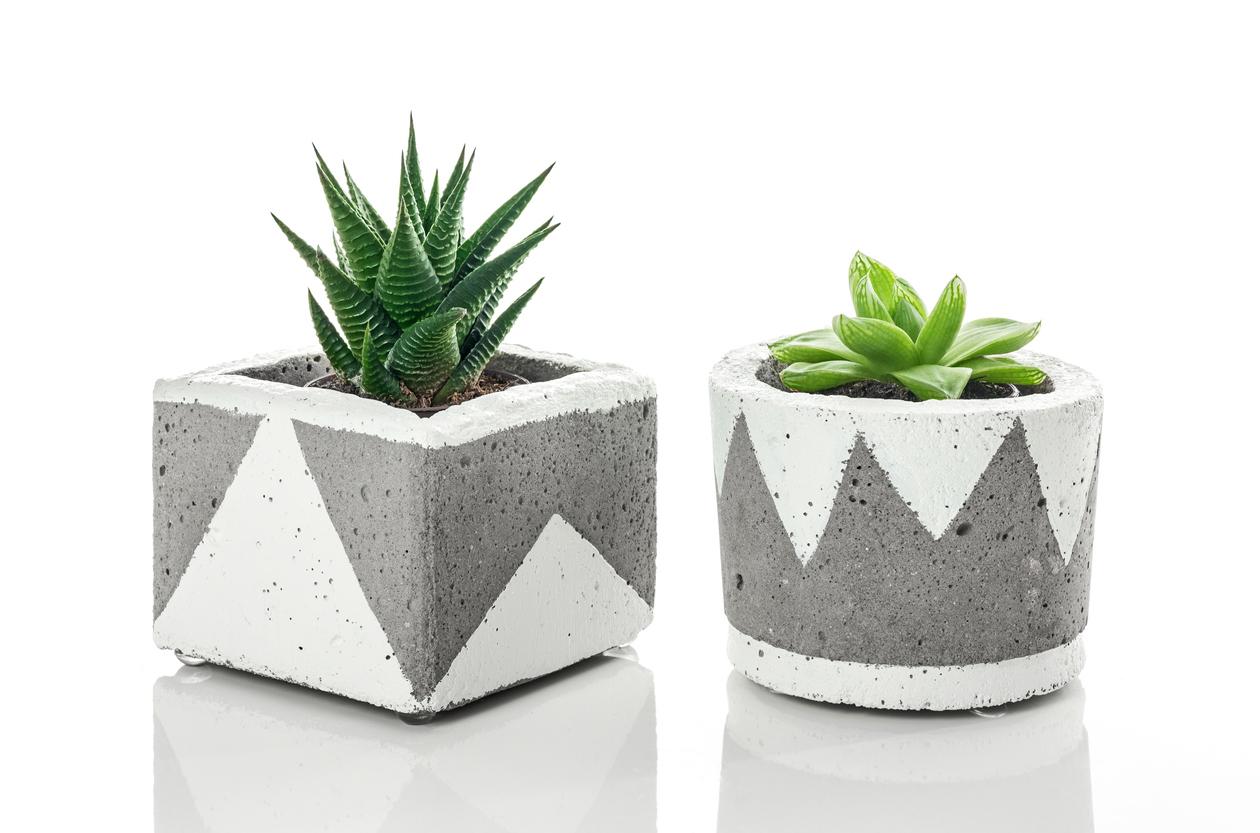 Passo a passo: veja como fazer vasos de cimento em casa