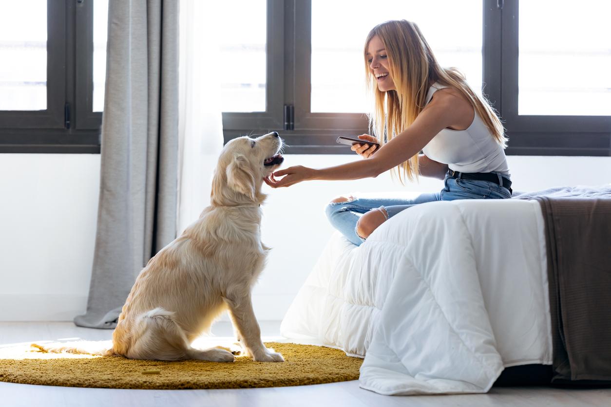 Seja para melhorar seu ambiente de trabalho em casa ou equipar o lar para a quarentena, prefira compras online. A taQi entrega!
