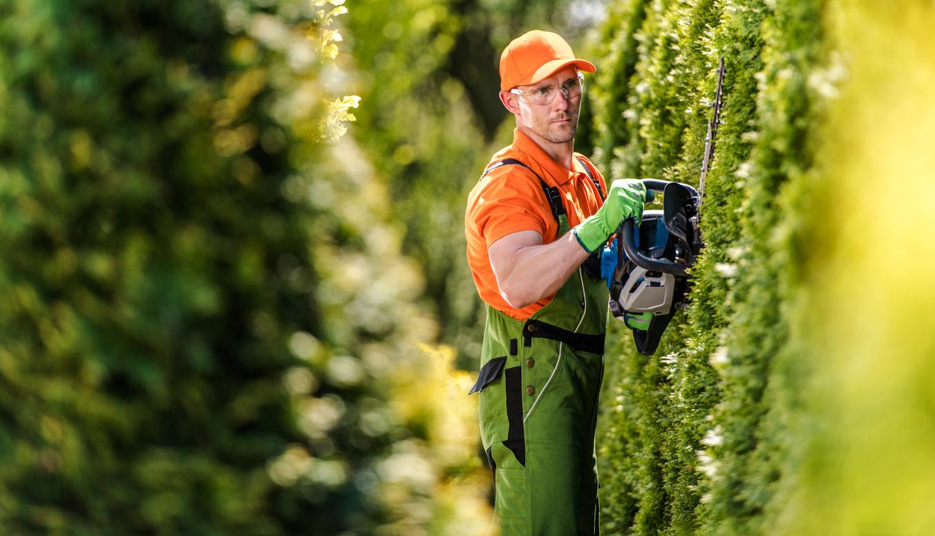 Aliadas da produtividade, ferramentas elétricas e máquinas tornam mais fácil o trabalho de manutenção do seu jardim