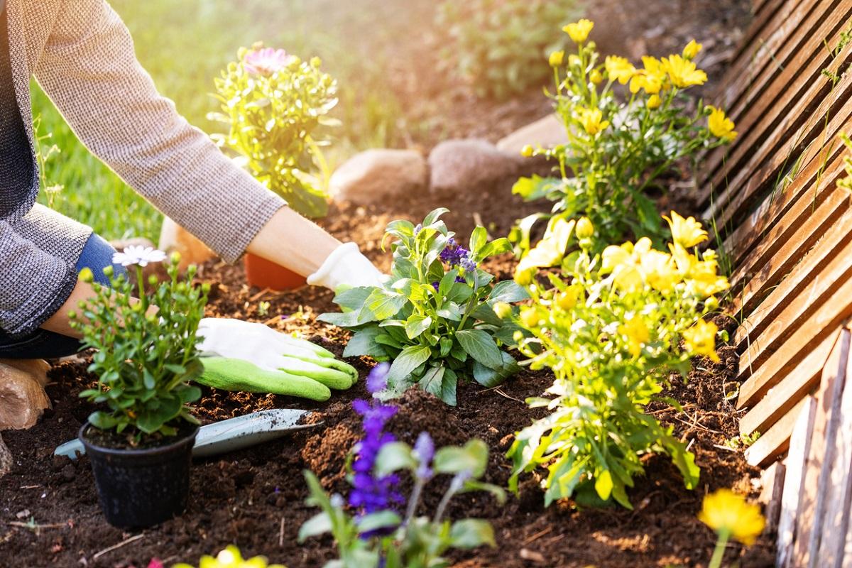 Quer aproveitar a primavera para deixar seu pátio ou varanda mais bonitos? Monte um kit com as melhores ferramentas para jardinagem!